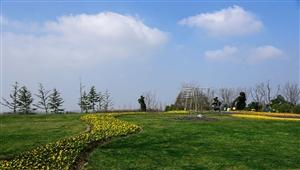 花博园里的风景