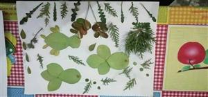 保护湿地,保护家 ――――同家庄小学主题系列活动