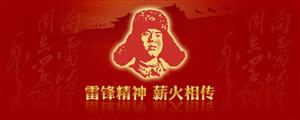 同家庄镇杨家庄小学雷锋月系列活动