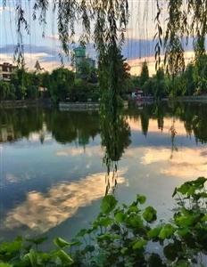 莲花池,见证历史的变迁