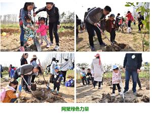 """""""网聚绿色力量""""滁州市第三届  公益植树活动完美收官!"""