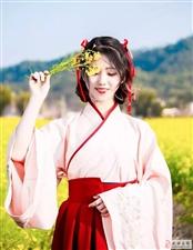 【邰韵古城】丨金色花海,浪漫之旅