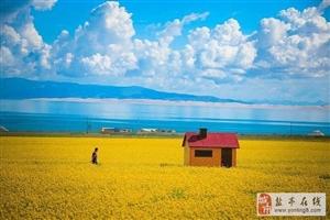 特价!4月22、29号!与您相约青海湖、茶卡盐湖、沙波头、通湖草原!