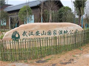 这,是江夏安山国家湿地公园