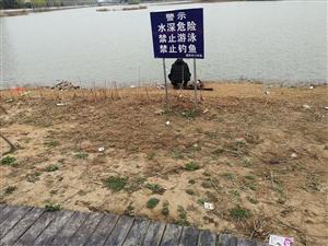 周口生态园游玩,发现有些游客践踏绿化苗木