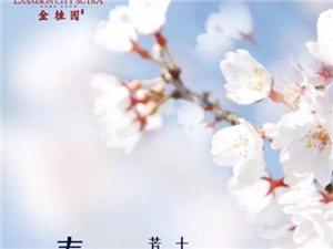 【天伟・金桂园】春分