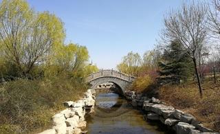 春分这天,我在公园看风景