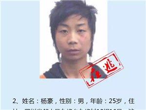 【悬赏通缉】丰都人注意!见到这11个人请立即报警,最高奖5万!