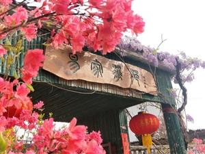 春暖花开,大美新县――杜鹃盛宴尽在易家花苑