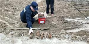 宿州:民警徒手转移5枚炮弹,必须赞!
