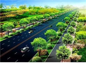 临泉城区将新建(改造)7条道路,就在家门口!