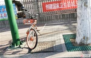 大街上这些小单车来了博兴才是受尽了委屈!