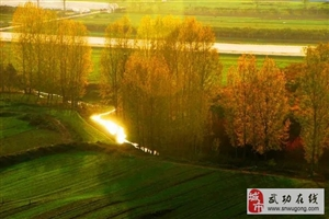 【绿野书院】诗词五首:诗意人生―文/张兆辉