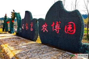 """阳春三月""""三花""""香"""