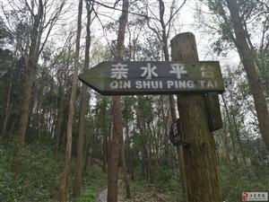 边走边拍――江夏纸坊青龙山一日游。