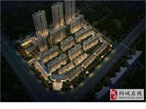 桐城城区又一新楼盘规划公示!看在哪??
