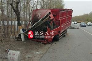 保定街头一货车撞倒路边多棵绿化树,车头严重变形