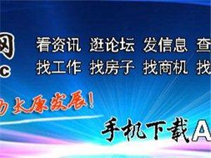 """松桥小学开展""""讲党课、话改革、鼓干劲、谋发展""""主题党日活动"""