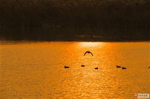 落日余晖麻大湖