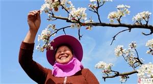 春花绽放办盛会, 桃李芬芳助脱贫