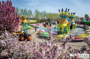 第五届博华海棠观光节4月12日盛大开幕