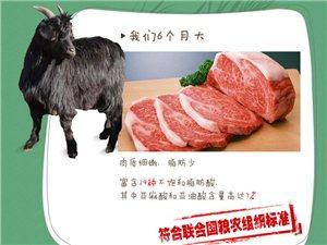 羊肉的营养价值你知道吗?
