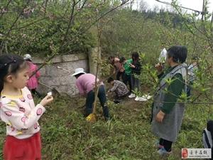 清明节,金沙平台网址人扫墓千万不要犯这种大错误, 做不孝的事!