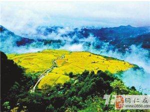 松桃响水洞:一幅藏在苗乡的绝美画卷