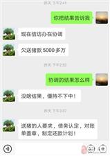 网友爆料:众品金沙平台网址公司因拖欠收猪款被卖猪户堵门!