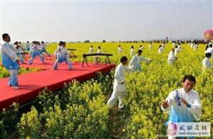 【武功古城】旅游 《金色花海,醉美古城》油菜花节(党小成/图文)