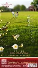 【天伟・金桂园】清明节