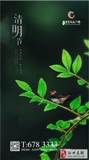 【绿洲・望嵩文化广场】清明节