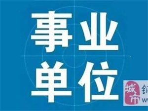 铜仁市万山区事业单位2019年公开招聘(引进)高层次及急需紧缺人才职位表