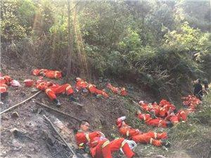 涪陵一山林深夜突发山火,消防战士通宵灭火10余小时,累瘫在地感动网友!