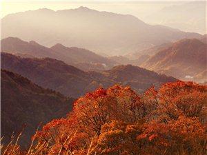 马鬃岭秋色――一个五彩斑斓的大美世界