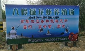 """小燕交友俱乐部一行赴""""八岭城养殖场""""举办休闲之旅"""