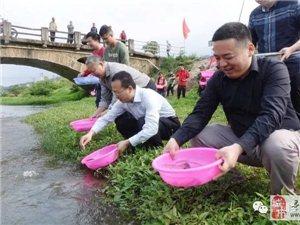 寻乌菖蒲乡鱼苗放生活动:人勤春早,水清鱼欢!