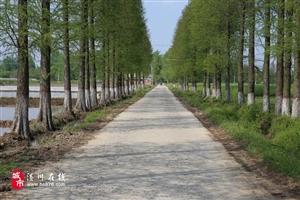 距潢川县城17公里,付店这个村庄竟有如此美景,还有好吃的...