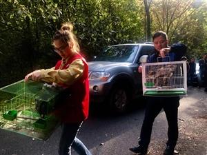爱鸟护鸟、共享自然:开化开展爱鸟周活动!