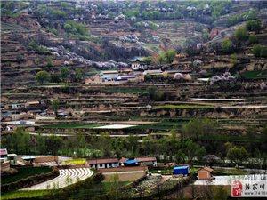 张家川有个叫马坪的村庄,春天的景色如世外桃源