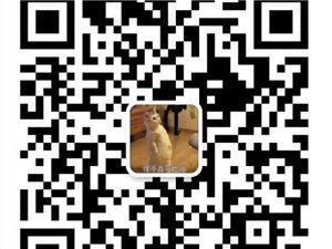 【兼职】招募纸巾分销员