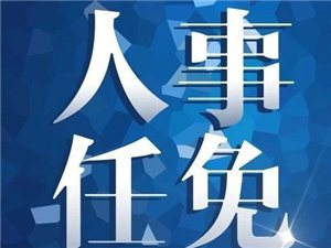 湖北4市任免、公示52名干部:含武�h市副市�L、咸��市委常委