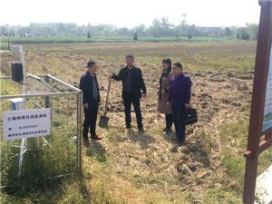 大关镇耕地质量调查点增至8个
