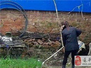 金沙平台网址县扶贫小故事:三让香油传佳话(乔秋凤)