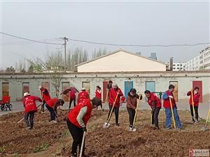 永乐社区组织低保户公益性劳动