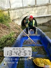 威尼斯人线上平台国祯环卫开展河道垃圾打捞清洁工作