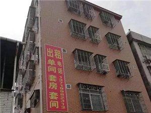梅州城北房屋出租海吉星附近房屋出租
