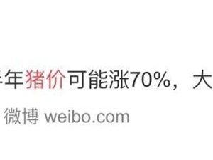 """70%?下半年�i肉�r可能�j升�@么多?�i又""""�w""""了?"""