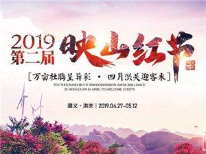 """五一巨热的遵义市播州区第二届""""映山红节""""27号开幕为时16天"""