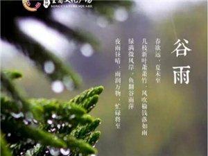 【绿洲・望嵩文化广场】谷雨~夜雨昼晴,雨润万物